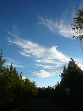 Bear Cove Bed and Breakfast: a lovely sky