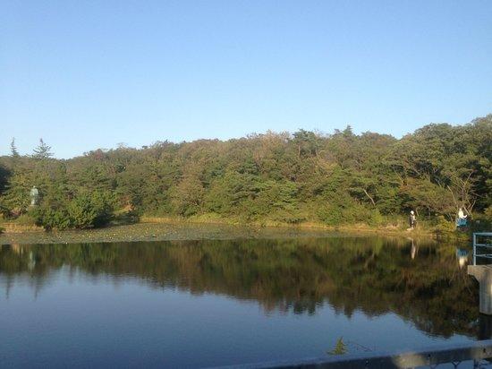 Goshiki Garden: Nature