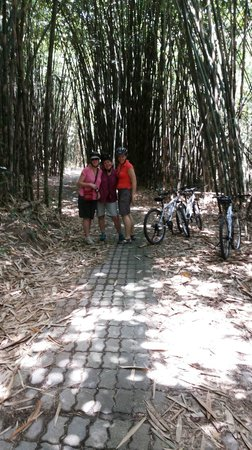 Bali Grace Cycling: bamboo forest cycling