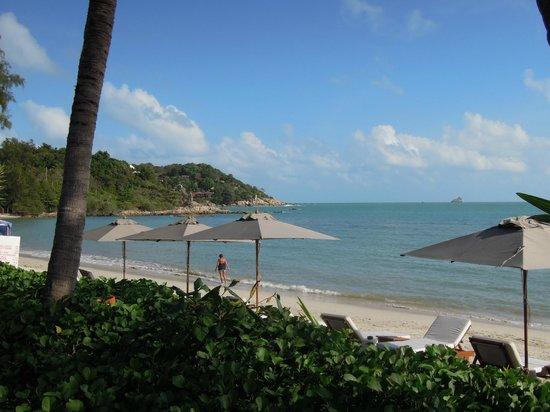SALA Samui Choengmon Beach Resort: Hotelstrand