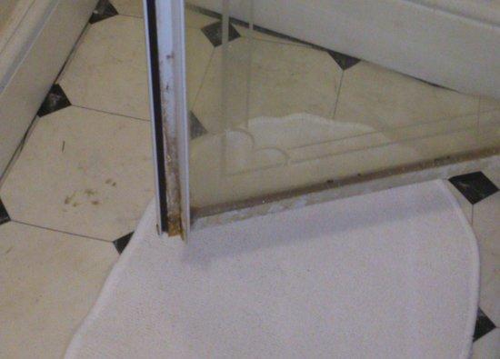 The Merchants Hotel : dirty shower door