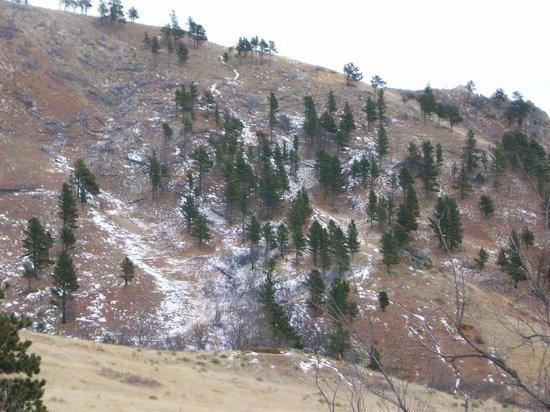 Bear Butte State Park: Bear Butte