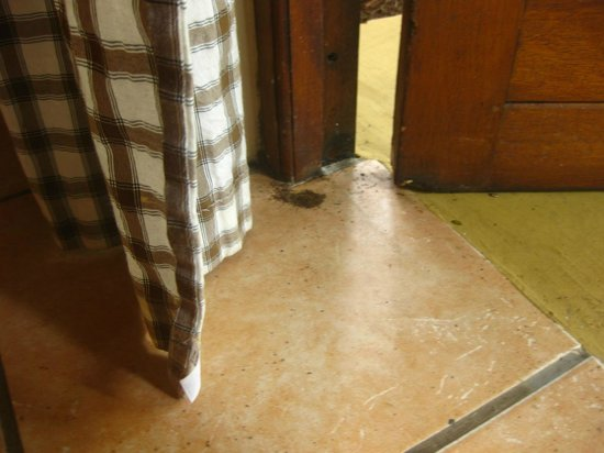 Lidiko Lodge: ants bringing in sand under front door. went un-cleaned for both days of our stay