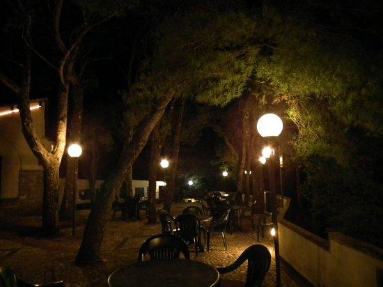 La Pineta Park Hotel : yard
