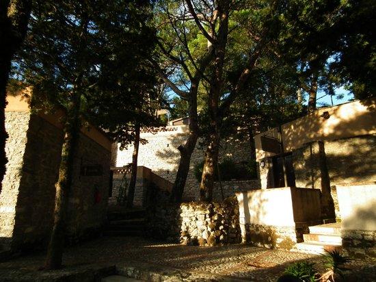 La Pineta Park Hotel : rooms exterior