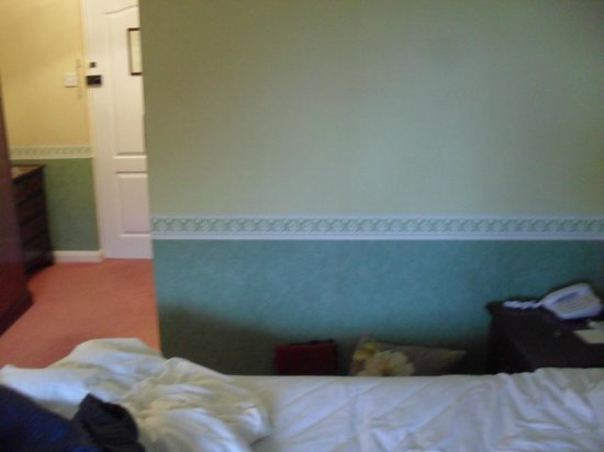 Moorland Garden Hotel: Outdated room!