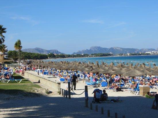 Universal Aparthotel Elisa: la plage la plus près de cet hotel