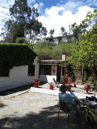San Jorge Eco-Lodge & Botanical Reserve: Birding on the patios