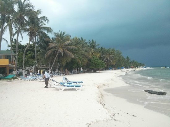 Cocoplum Beach Hotel: Praia do hotel