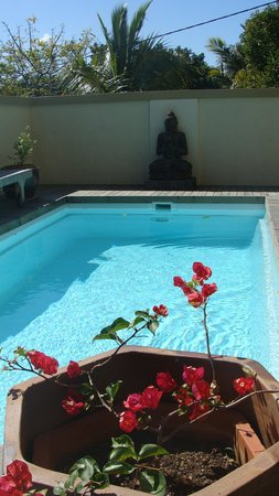 Happy Days Guest House: piscine