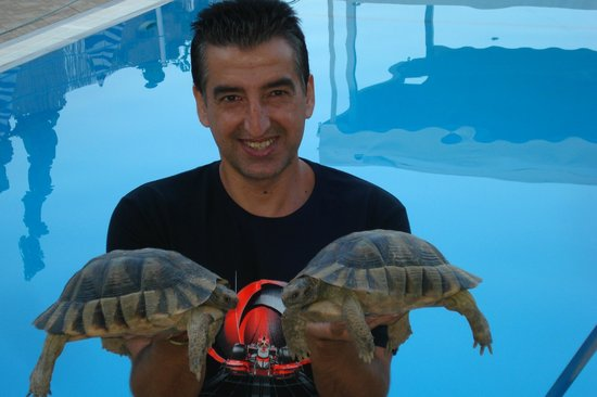 Stella Apartments: Savas and his pet tortoises
