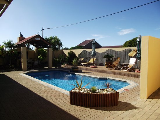 Avenues Guesthouse: The Pool at Avenues Guest House
