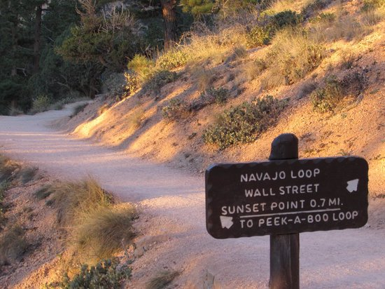Navajo Trail: Trail markers at bottom of trail