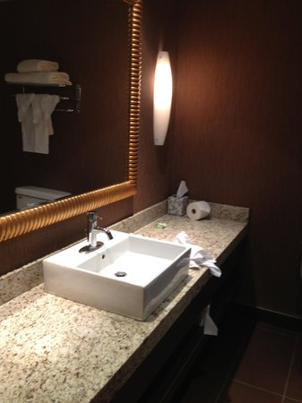 Radisson Hotel and Convention Centre: modern bathroom