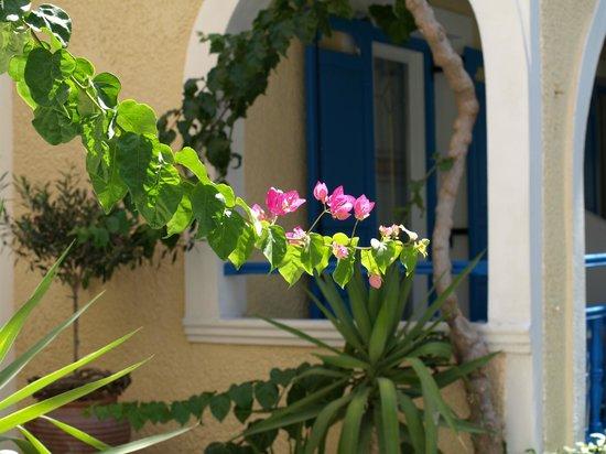 Hotel Zeus: Garden