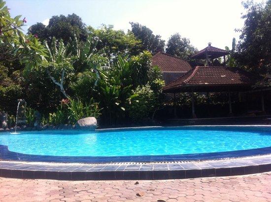 Matahari Bungalow Bar & Restaurant: Pool area