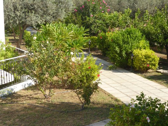 Lindos Athena Hotel: plenty of fruit trees in the grounds