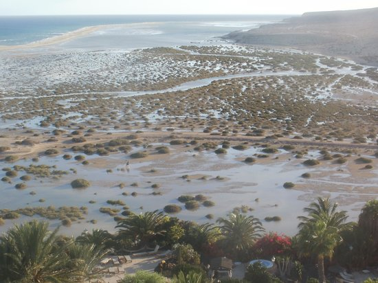 Meliá Gorriones Fuerteventura: de lagune vanaf de kamer gezien