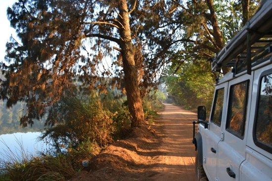 Luwawa Forest Lodge: The drive to Luwawa - 4WD required!