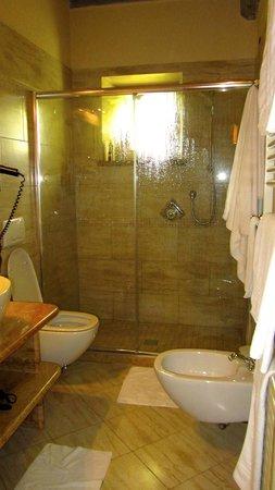 Agriturismo La Sovana : shower