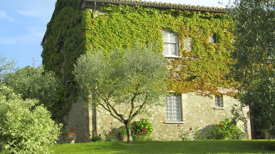 Agriturismo La Sovana : our window - second floor