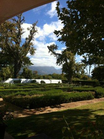 Steenberg Hotel: Blick von der Terrasse auf die Rückseite vom Tafelberg