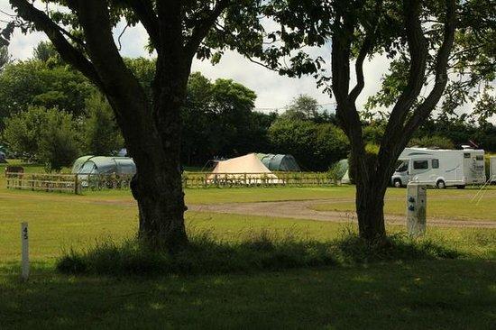 Ninham Country Holidays: Campground