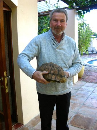 De Leeuwenhof Hotel/Guesthouse: Don and his new rescued friend