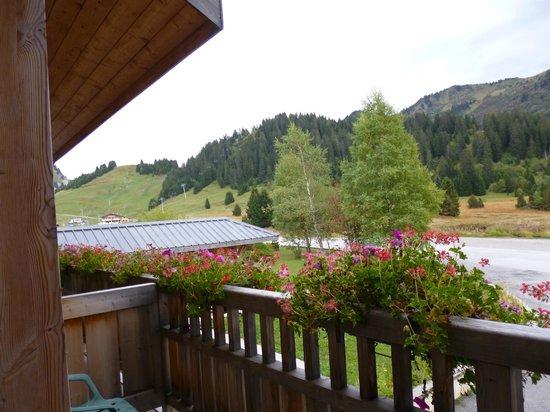 Chalet Hotel Vacca Park : Vue depuis la chambre 4 (balcon)