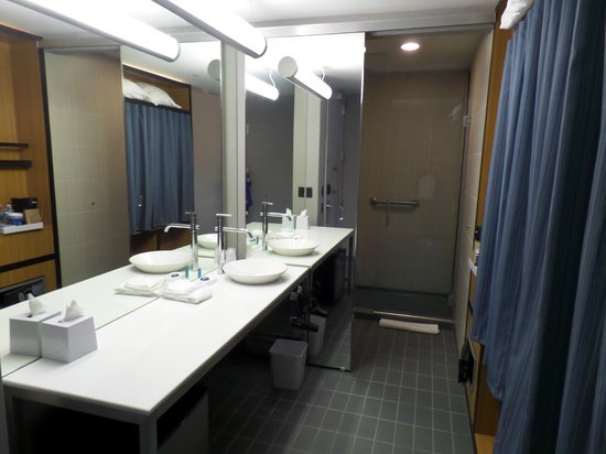 aloft Bolingbrook: closet is to right, shower/toilet behind mirrored door