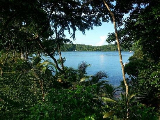 Hotel Bocas del Mar: Sicht vom Bungalow