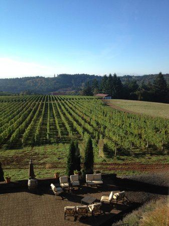 Black Walnut Inn & Vineyard: View from Master Suite