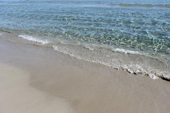 Los Delfines Hotel: Playa Mediterráneo