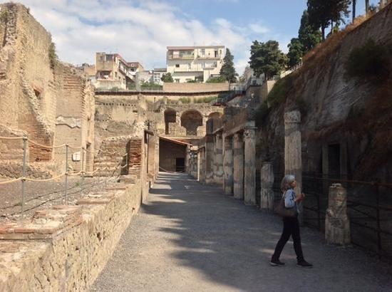 HSC Pompeii and Herculaneum Practice Questions