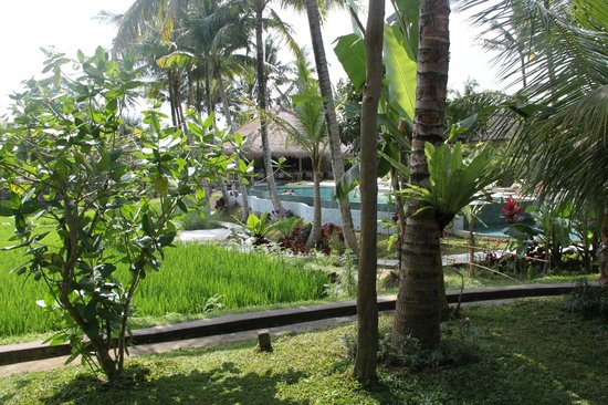 Kenanga Boutique Hotel: vue de la chambre