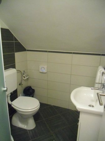 Apartments Donat: Shower room and toilet