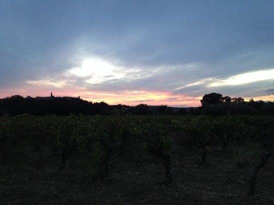La Gramière - Wine Truck : A beautiful view from the vineyard