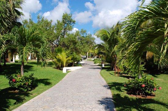 El Dorado Royale, by Karisma: Resort grounds