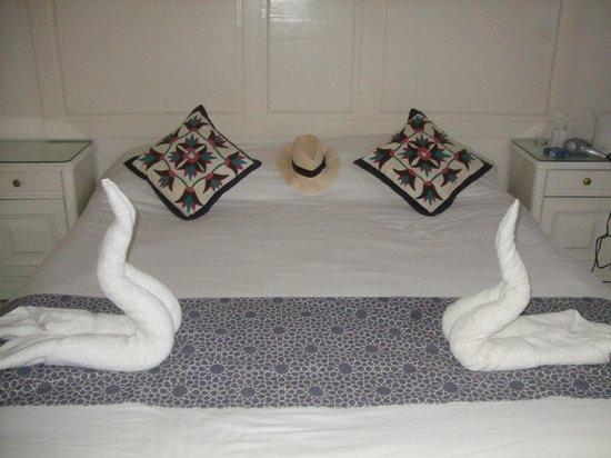 Coral Coast Hotel: perfect
