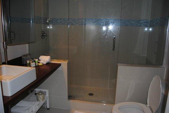 Clinton Hotel South Beach: Baño