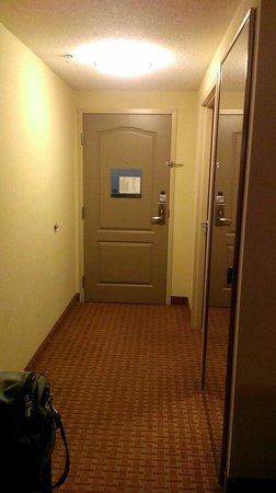 Hampton Inn Chattanooga-North/Ooltewah: Other entryway view