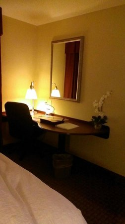 Hampton Inn Chattanooga-North/Ooltewah: Desk