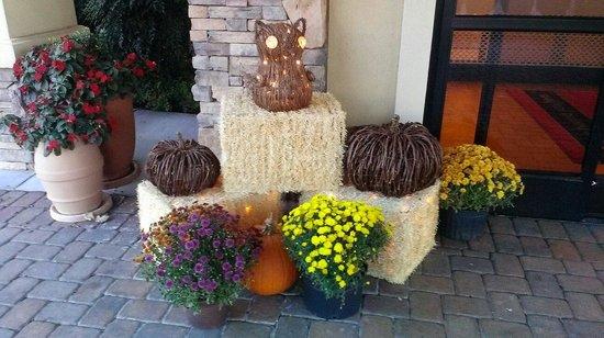 Hampton Inn Chattanooga-North/Ooltewah : Cute fall decor