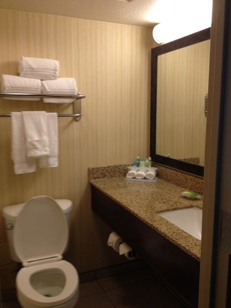 Holiday Inn Express Hotel & Suites Fort Worth Downtown: Bathroom