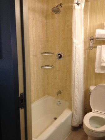 Holiday Inn Express Hotel & Suites Fort Worth Downtown : Bathroom