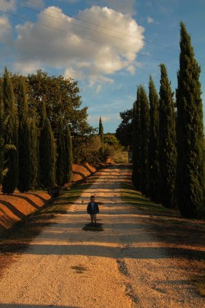 Podere Il Tigliolo: Road towards the property