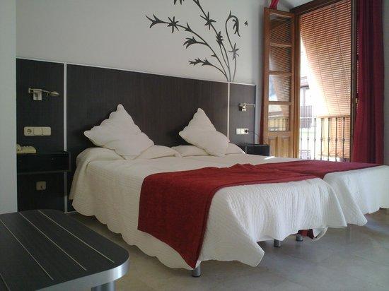 Las Nieves Hotel: habitacion