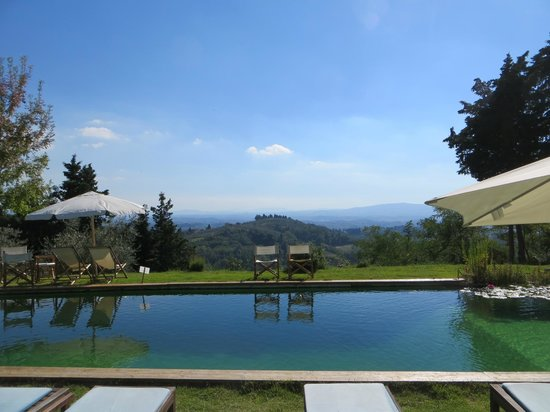 Il Paluffo - Main House B&B : The amazing pool and view from the pool