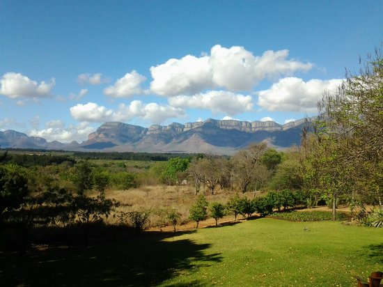 Zuleika Country House: the view from our cottage patio