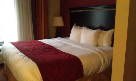 Comfort Suites Manchester: King Bed